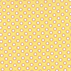 Little Miss Sunshine 5027-12