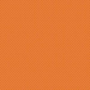 Pumpkin Spice 4064-O1